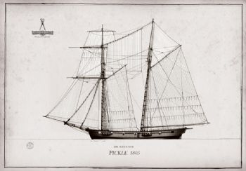 1805 HMS Pickle pen ink study